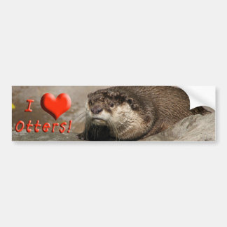 Helaine's Otter Bumper Sticker