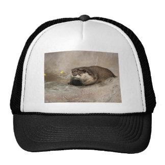 Helaine's Otter Trucker Hat