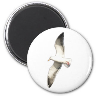Helaine's Soaring Seagull 2 Inch Round Magnet