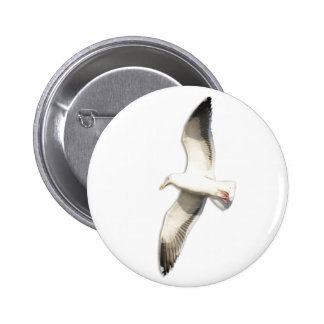 Helaine's Soaring Seagull Pinback Buttons
