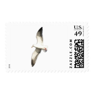 Helaine's Soaring Seagull Stamps