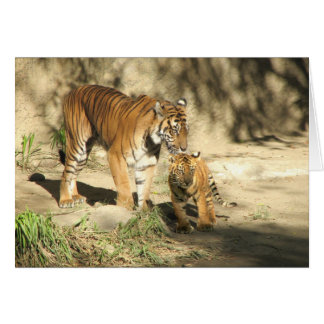 Helaine's Tiger and Cub Card