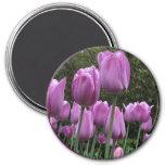 Helaine's Tulips Fridge Magnet