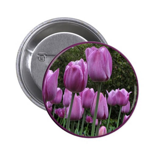 Helaine's Tulips Pinback Buttons