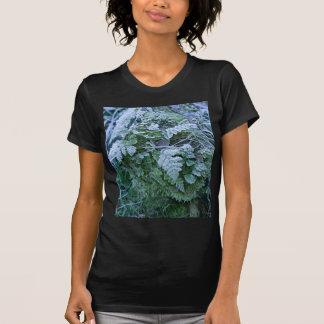 Helecho congelado en una camiseta negra cabida del remeras