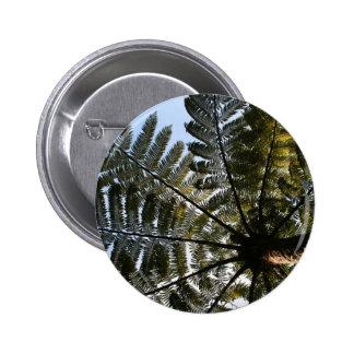Helecho de árbol de Nueva Zelanda Pin Redondo 5 Cm