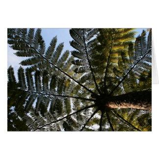 Helecho de árbol de Nueva Zelanda Tarjeta De Felicitación
