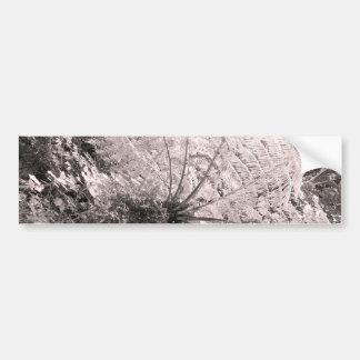 Helecho de árbol monocromático etiqueta de parachoque