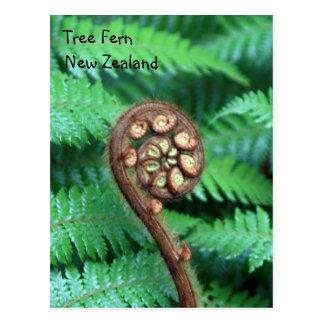 Helecho de árbol Nueva Zelanda Tarjeta Postal