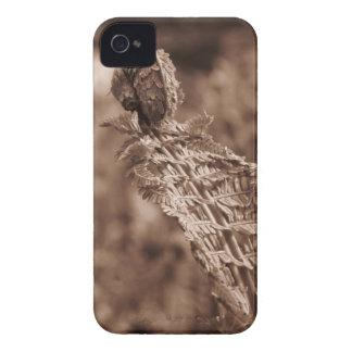 Helecho en sepia Case-Mate iPhone 4 protectores