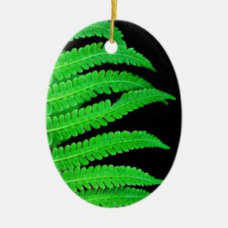 Helecho negro y verde ornaments para arbol de navidad