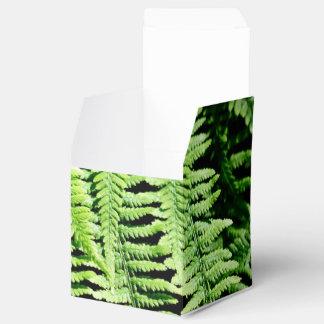 Helecho que cubre el bosque cajas para regalos