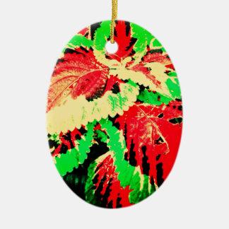 Helecho rojo y verde