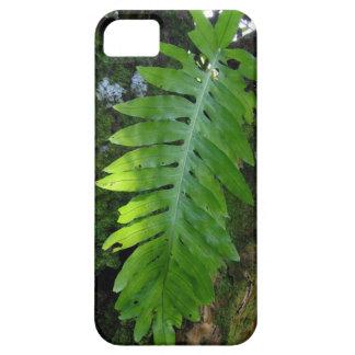Helecho tropical iPhone 5 Case-Mate funda