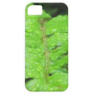 Helecho verde con rocío de la mañana funda para iPhone SE/5/5s