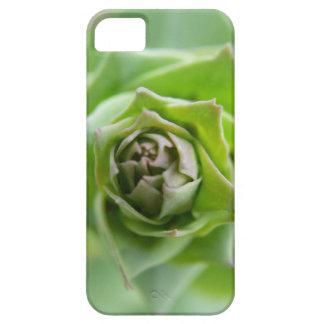 Helecho verde funda para iPhone SE/5/5s