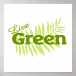 helecho verde vivo posters