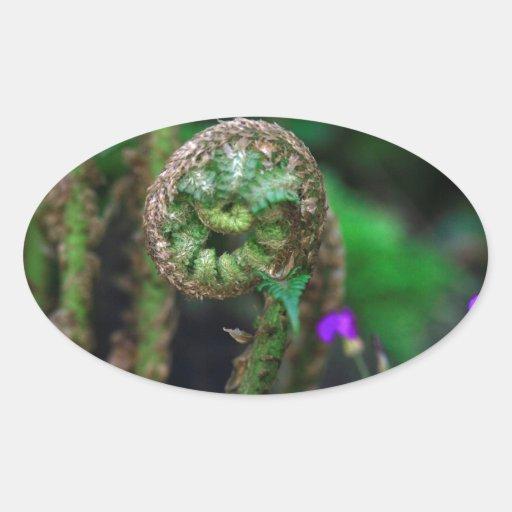 Helecho y flores calcomanías ovales