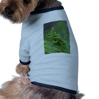 Helechos abstractos camiseta de perrito