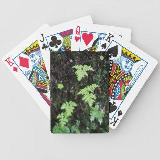Helechos - baraja cartas de poker