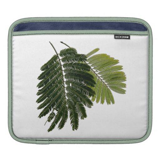 Helechos con hojas finos grabados en relieve fundas para iPads