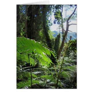 Helechos de árbol hawaianos tarjeta de felicitación