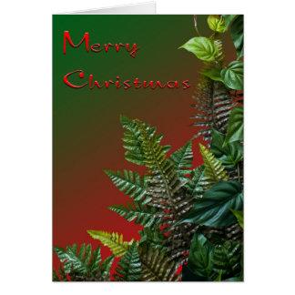 Helechos de navidad tarjetón