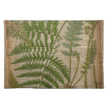 helechos decorativos del periódico botánico del mantel individual