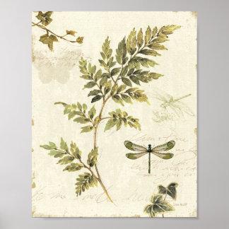 Helechos decorativos y una libélula póster