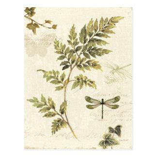 Helechos decorativos y una libélula postales