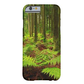 Helechos en el bosque funda de iPhone 6 slim