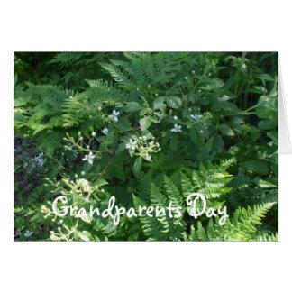 Helechos y flores tarjeta de felicitación