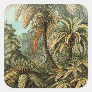 Helechos y palmera del vintage botánicos pegatina cuadrada