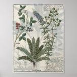 Helechos, zarzas y flores póster