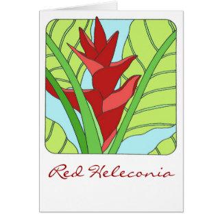 Heleconia rojo felicitacion