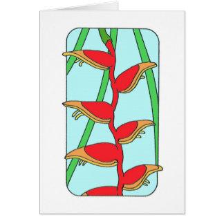 Heleconia tropical tarjetas