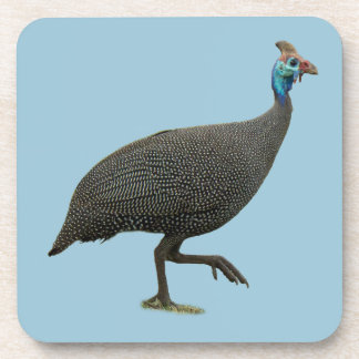 Helemted Guineafowl Plastic Coaster