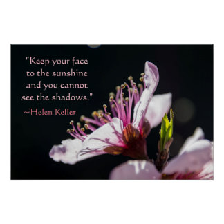 Helen Keller Quote Peach Blossom in the Sunshine Poster