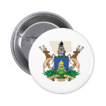 Helena City's Coat of Arms Pinback Buttons