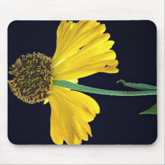 Helenium, Bressingham's Gold Mouse Pad