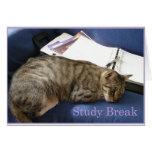 Helen's Study Break Cards