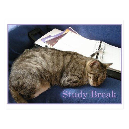 Helen's Study Break Postcards