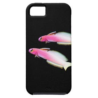 Helfrich's firefish iPhone SE/5/5s case