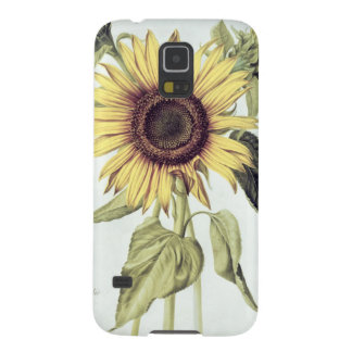 Helianthus Annuus from 'Velins du Roi Vol.36' Galaxy S5 Covers