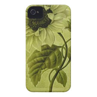 Helianthus del girasol funda para iPhone 4