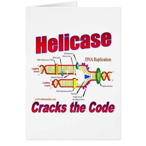 Helicase Cracks the Code Card