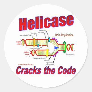 Helicase Cracks the Code Classic Round Sticker