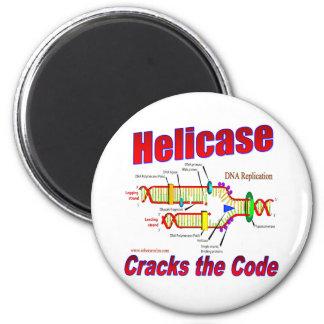 Helicase Cracks the Code Magnet