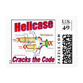 Helicase Cracks the Code Postage