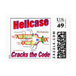 Helicase Cracks the Code Stamps